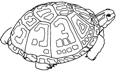 free black and white sea turtle clipart clipart best