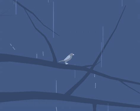 small animation update update v0 1 1 where do birds go