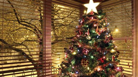christmas tree with house wallpaper tree background picture image