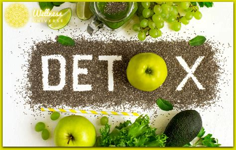 Project Detox by 6 Tips For A Healthy Detox Program The Wellness Universe