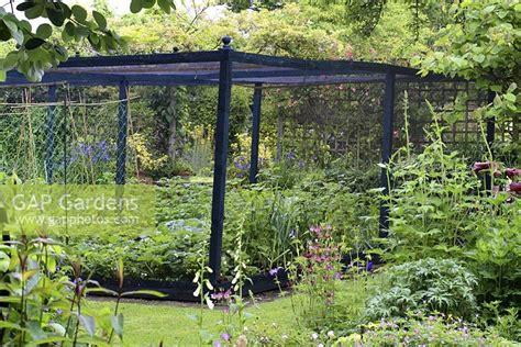 wooden vegetable garden gap gardens enclosed vegetable garden with wooden cage