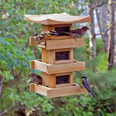 squirrel proof bird feeder for large birds