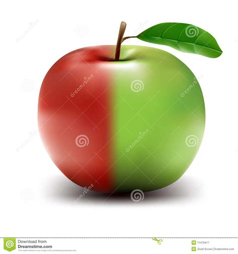half half half green half high res vector apple stock vector