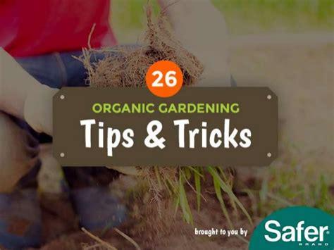 Organic Gardening Tips 26 Organic Gardening Tips And Tricks