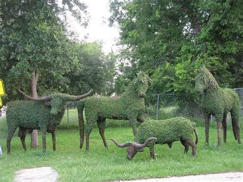 animal topiaries for sale topiary design in animal shapes