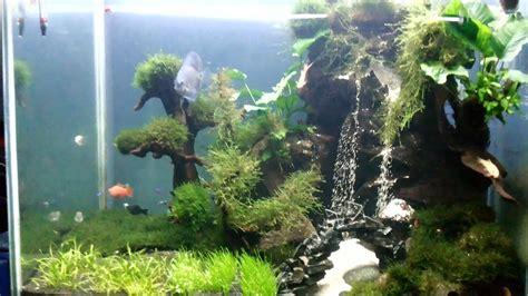 aquascape air terjun aquascape air terjun youtube