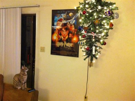 pet friendly christmas tree alternatives 20 ways to protect your trees from your pets destructive tendencies