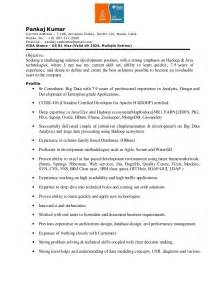 Pankaj Resume For Hadoop Java J2ee Outside World