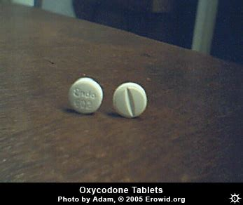 Percocet After C Section by Erowid Pharms Vaults Images Oxycodone Tablet