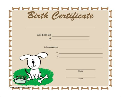 birth certificate word template sle birth certificate 18 free documents in word pdf