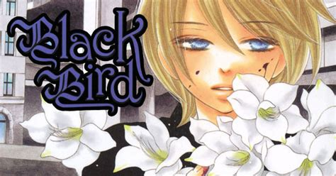 Black Bird Vol 13 black bird vol 13 kanoko sakurakoji of