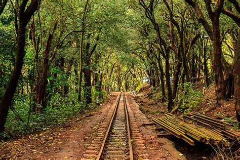 Best Places to Visit in Matheran During Monsoons