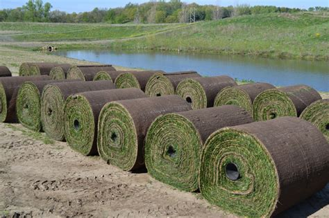 sod installation tips for successful new construction sodding