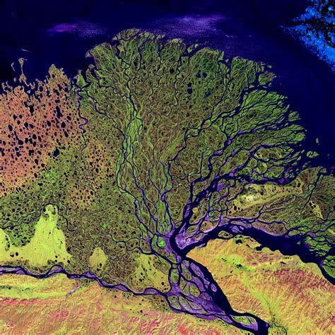 painting delta lena river delta image of the day