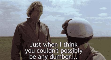 movie quotes just when i thought i was out dumb and dumber quotes movie quotes
