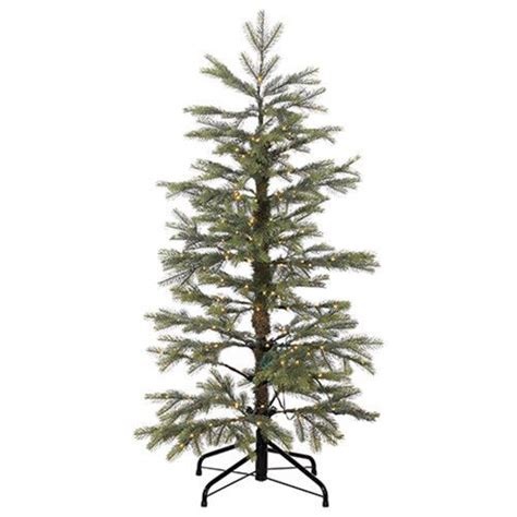 best 25 noble fir christmas tree ideas on pinterest