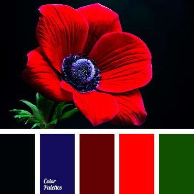 color combination with red best 20 red color combinations ideas on pinterest red color palettes winter colors and blue