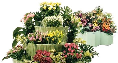 fiori vaso vaso fiori piante da terrazzo vaso di fiori