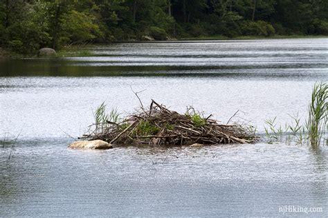 boat launch greenwood lake nj img 0085