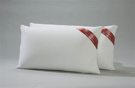 Pillows For by Rejuvenite Pillows