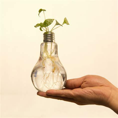 Light Bulb Vase by Creative Light Bulb Glass Vase Hydroponic Flower Vase For Home Decoration Novelties China