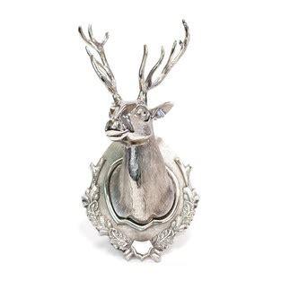 images  deer heads  pinterest wall mount