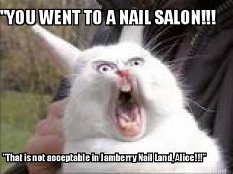 newest memes jamberry memes newest memes using same template memes