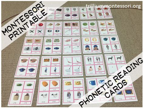 free printable montessori three part cards happy 4th of july and a flash freebie trillium montessori