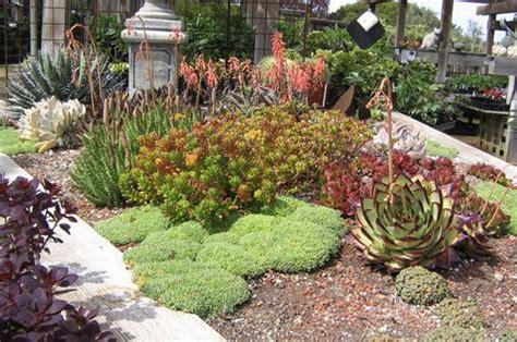 Rock Garden Nursery Garden Project A Rock Garden Plants Www Coolgarden Me