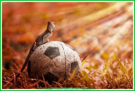 imagen imágenes geniales el mejor fondo de pantalla equipos de futbol imagenes