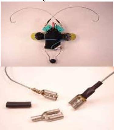 membuat robot kumbang tutorial membuat robot sederhana