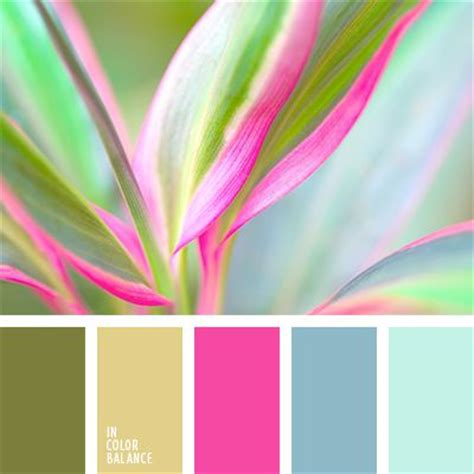 pink is a combination of what colors 25 best ideas about paint palettes on pinterest