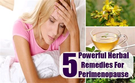 natural remedies for mood swings from menopause 5 powerful herbal remedies for perimenopause best herbs