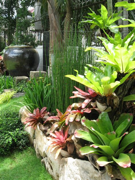 landscaping ideas for small yards gardening