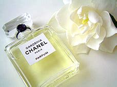 Review Of Chanels Gardenia Perfume by Chanel Gardenia Les Exclusifs Vintage And Modern Perfume