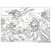 Coloring Page  Summer Fun