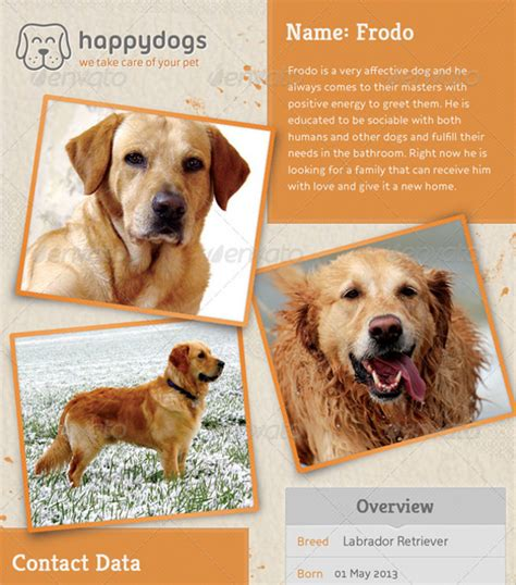 puppy for sale flyer templates lost flyer template 7 documents in vector