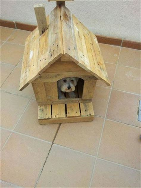 how to make a simple dog house out of wood tips to build simple dog house out of some wooden pallets pallets designs