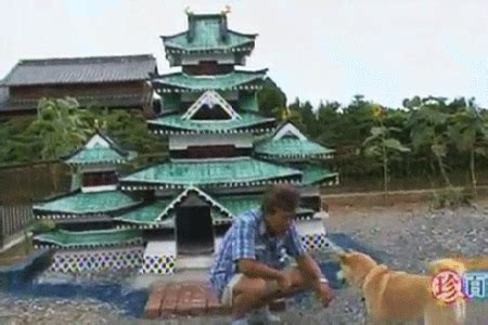 castle dog house impressive dog house designs and decorating ideas
