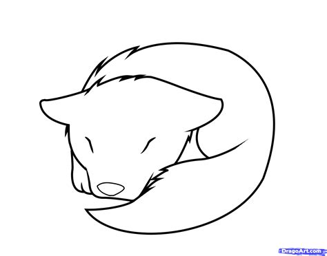 anatomy coloring book eye wolf pup clipart 31