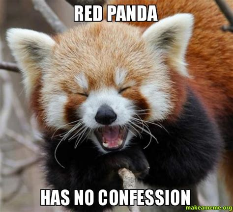Red Panda Meme - red panda meme quotes
