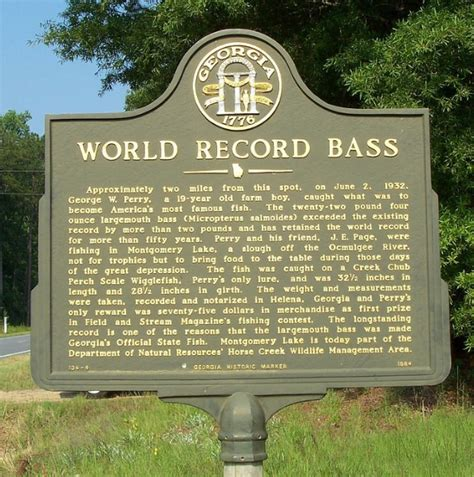 Ga Records State Fish Largemouth Bass