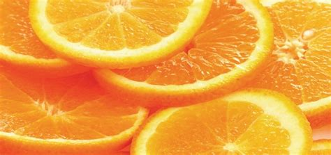 can puppies eat oranges can dogs eat oranges modern magazine