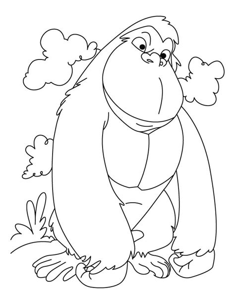 winner gorilla coloring pages download free winner