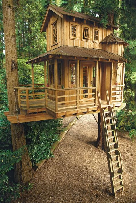 tree house master treehouse masters pete nelson 5 things every beginning builder must know house