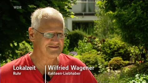 wilfried wagener bochumer pension 228 r liebt kakteen 252 ber alles lokalzeit