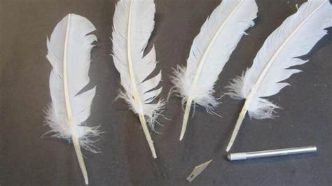 Paper Feathers - how to make a feather quill pen