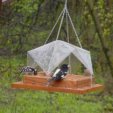 Platform Bird Feeder Diy Platform Bird Feeder Birdcage Design Ideas