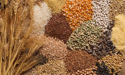 whole grains that protein 7 of the healthiest grains you could wish for canadian