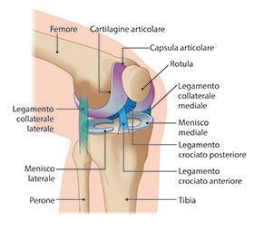 gonfiore all interno della dolore al ginocchio cause e possibili rimedi